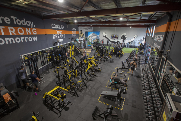 Iron Gym Platinum overview of gym and exercise equipment
