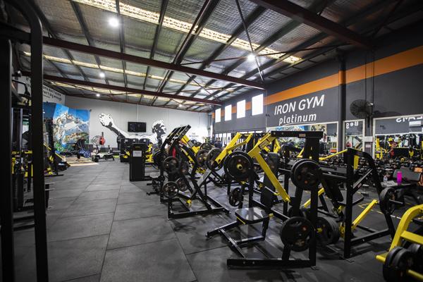 Iron Gym Platinum exercise equipment
